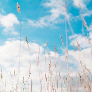 Le Ciel : c'est bien, c'est beau, mais c'est loin…