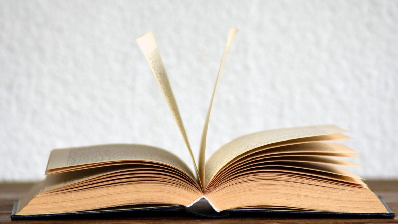 Pourquoi et comment enseigner la théologie biblique à votre Église ?
