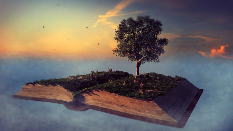Les Proverbes, un projet de formation de la personne